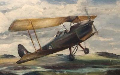 Tiger Moth Solo